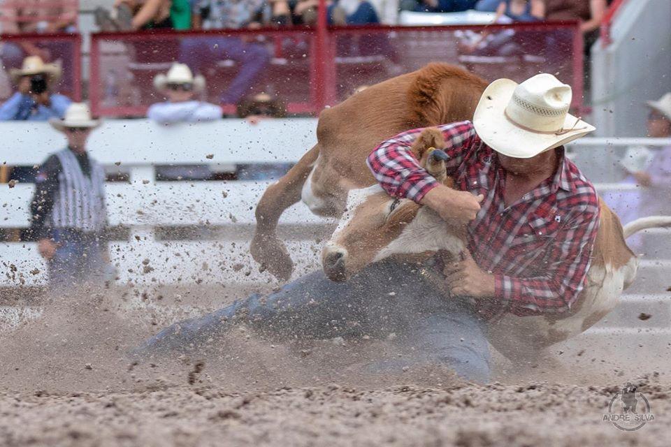 Trabalho de André Silva na PRCA Pro Rodeo