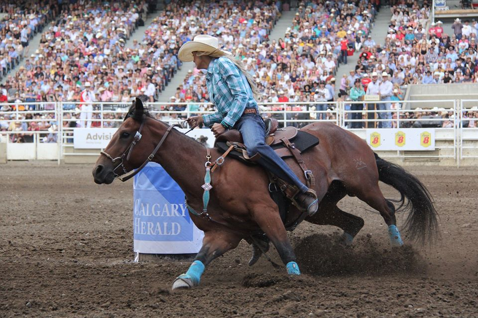 Três Tambores Cavalos Calgary