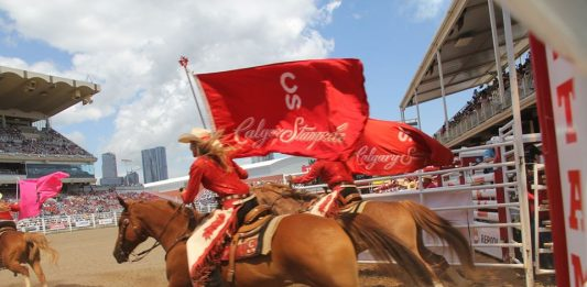 Calgary Stampede Rodeo PRCA
